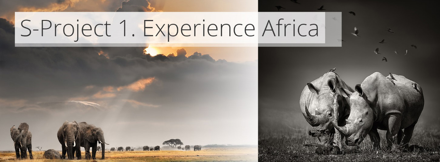 s-project - experience africa