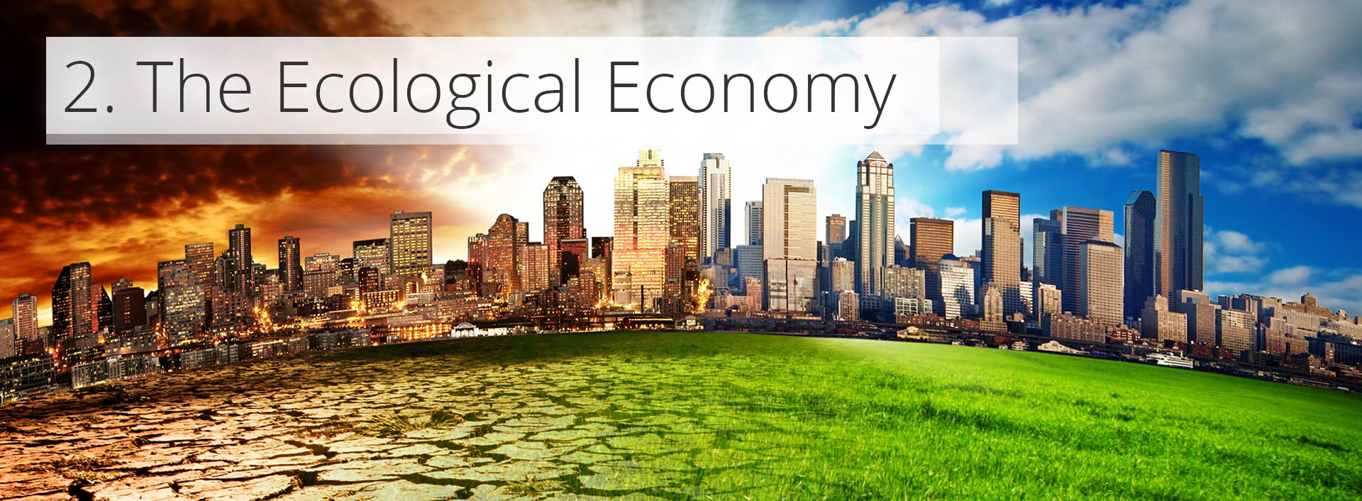 the ecological economy